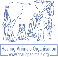 blue-hao-logo200