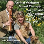 Animal Whispers Sound Therapy