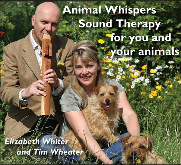 the animal healer whiter elizabeth
