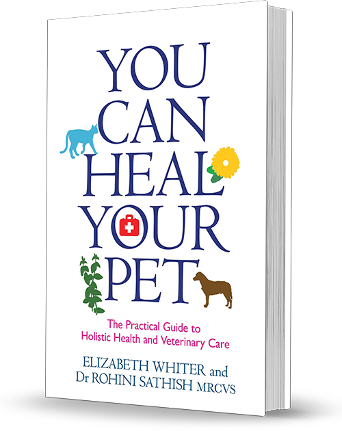 You Can Heal Your Pet Paperback
